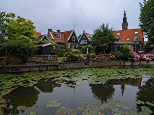 Фотографии Нидерланды Дома Кувшинки Водный канал Забором Кустов Edam Города