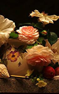 Фотографии Розы Ракушки Натюрморт Сливы Ваза Цветы
