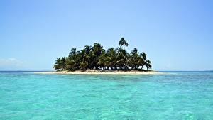 Фото Море Остров Тропики Пальмы