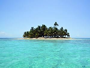 Фото Море Остров Тропики Пальмы Природа