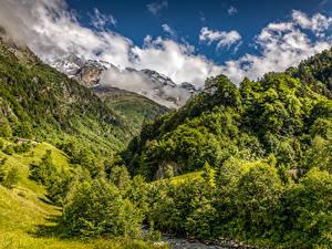 Фото Швейцария Гора Лес Пейзаж