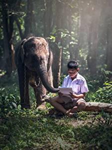 Обои Азиаты Слоны Мальчишка Сидя Трава Ребёнок