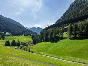 Картинки Горы Лес Луга Австрия Tyrol