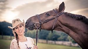 Фото Лошади Шляпа Голова Животные