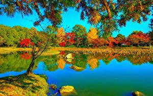 Обои Япония Киото Осень Парк Реки HDR Деревьев Ветки Daikaku-ji