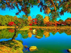 Обои для рабочего стола Япония Киото Осень Парк Реки HDR Деревьев Ветки Daikaku-ji Природа