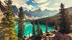 Фотографии Пейзаж Горы Лес Канада Озеро Банф Деревья Moraine