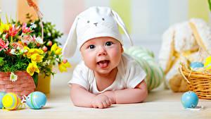 Картинки Праздники Пасха Яйцо Младенцы Шапки Улыбка Язык (анатомия) ребёнок