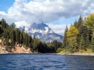 Фотография Реки Лес Гора Пейзаж США Парки Осень Облако Wyoming, Grand Teton National Park, Snake River Природа