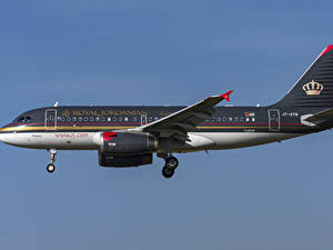 Картинки Самолеты Пассажирские Самолеты Эйрбас Сбоку Royal Jordanian, A319-100 Авиация