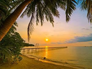 Картинка Рассвет и закат Берег Пальм Пляже