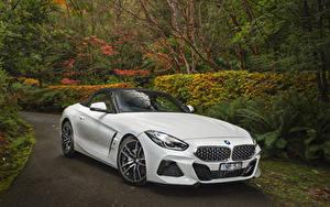 Обои BMW Z4 БМВ Белый 2019 sDrive20i M Sport