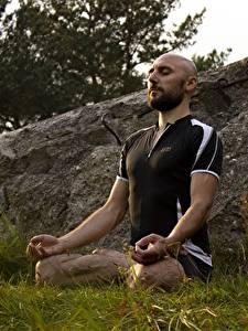 Картинка Мужчины Поза лотоса Трава Лысый Сидящие Йога