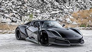 Фото Renault Металлик Черная 2018 Beast Alpha X  Blackbird авто