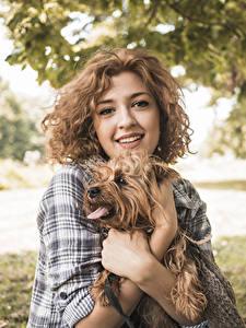 Картинка Собаки Шатенка Взгляд Руки Йоркширский терьер Девушки Животные