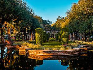 Фотография США Сады Пруд Майами Дизайн Кусты Деревья Vizcaya Museum and Gardens Природа