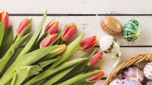 Картинки Праздники Пасха Тюльпаны Доски Яйца цветок