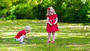 Фото Девочка Мальчики Две Платье Трава ребёнок