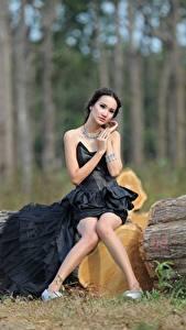 Фотография Азиаты Ствол дерева Брюнетка Платье Сидящие Ноги Девушки