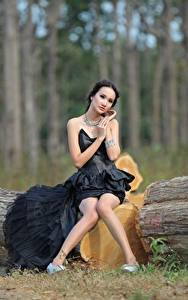 Фотография Азиаты Ствол дерева Брюнетка Платье Сидящие Ноги