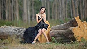 Фотография Азиаты Ствол дерева Брюнетки Платья Сидящие Ног