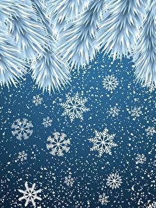 Фотографии Рождество Снежинки