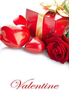Фото День святого Валентина Розы Белым фоном Английский Красный Сердце Подарков Ленточка Цветы