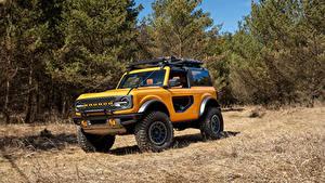Обои для рабочего стола Форд Внедорожник Желтая Дерево Bronco 2, Door Preproduction, 2020 авто