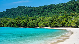 Фотографии Тропики Берег Леса Море Пляж Champagne Beach Vanuatu