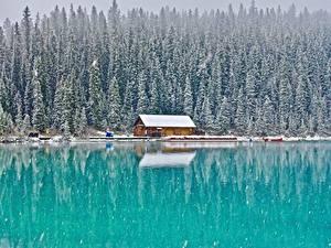 Фото Здания Лес Озеро Канада Парк Снега Банф Lake Louise, Alberta