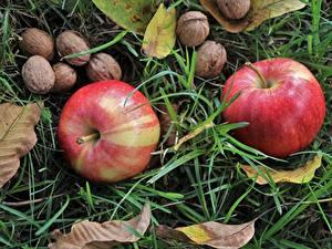 Картинка Вблизи Фрукты Орехи Яблоки Трава Листва Пища
