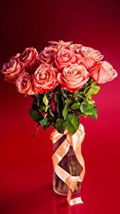 Фотографии Букеты Розы Лента Розовый Красный фон