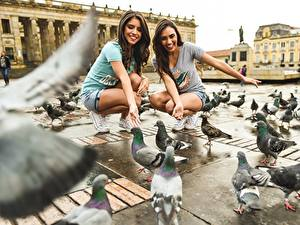 Обои Голуби Птицы Городская площадь Красивая Улыбка девушка