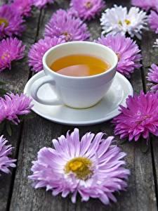 Фотография Чай Астры Чашка Цветы