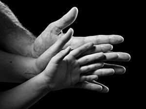 Фото Пальцы Вблизи Рука На черном фоне