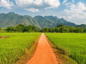 Фотография Вьетнам Горы Поля Дороги Mai Chau