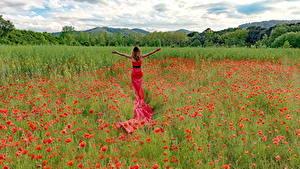 Картинки Поля Маки Платье Цветы Девушки Природа