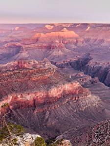 Фотография Гранд-Каньон парк Штаты Парк Скале Природа