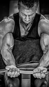 Фото Мужчина Бодибилдинг Руки Штангой Мускулы Физическое упражнение спортивные