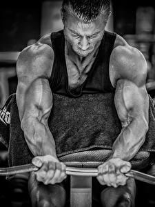 Фото Мужчины Бодибилдинг Руки Штанга Мускулы Физические упражнения Спорт