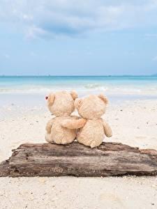 Фото Море Мишки Любовь Пляж Объятие Природа