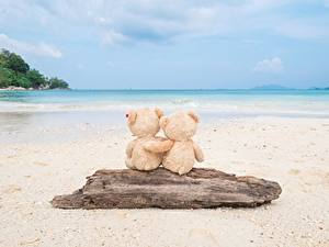 Фото Море Плюшевый мишка Любовь Пляжи Обнимаются Природа