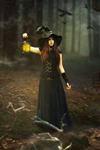 Фото Ведьма Фонари Ночь Шляпа Девочки Фэнтези Девушки