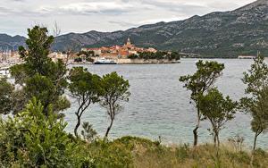 Фотография Хорватия Здания Пристань Залив Деревья Korčula Town