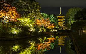 Фото Япония Киото Осенние Парки Пруд Деревья Ночные Уличные фонари Природа