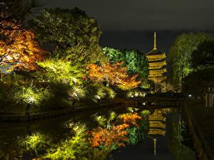 Фото Япония Киото Осенние Парки Пруд Деревьев Ночь Уличные фонари Природа