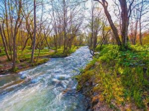 Картинки Россия Весна Река Деревья Yuzhno-Sakhalinsk Природа