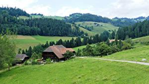 Картинка Швейцария Леса Дома Луга Холмы Emmental Природа
