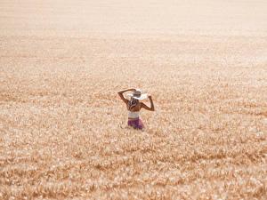 Обои для рабочего стола Поля Пшеница Шляпы Блондинка молодые женщины