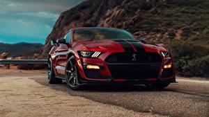 Обои Форд Красные Спереди Полосатый Бордовая Mustang Shelby GT500 2019